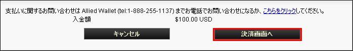 入金_visa_3